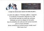 » COUPE TES CHEVEUX POUR SAUVER UNE BOULE DE POILS»